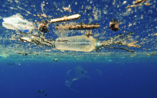 Image for article Fraser tackles ocean plastic