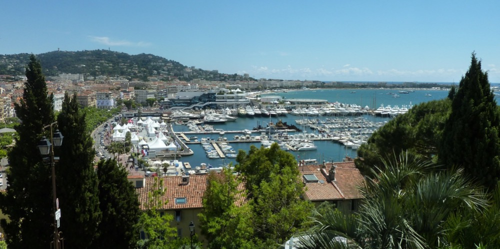 Image for article A tragic end to Cannes film festival