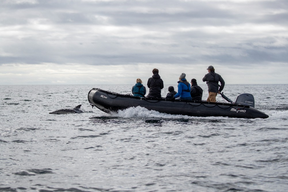 Image for article EYOS announces Iceland expedition